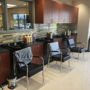 Cosmetology Labs